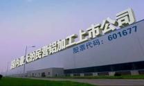 大型民营铝加工上市企业,用户遍布全球50多个国家和地区,部分产品国内市场占有率达40%以上;